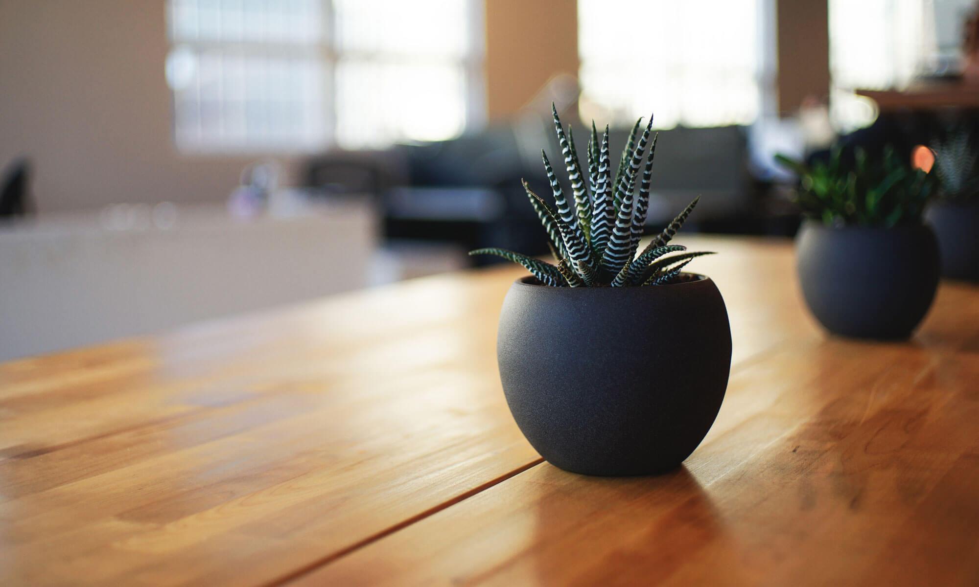 hoitfatt.com